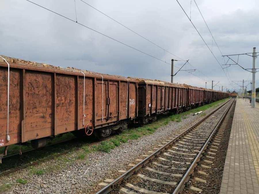 Cantitatea de 1.659,84 m.c. material lemnos provenit din străinătate, fără niciun document de transport, a fost confiscată