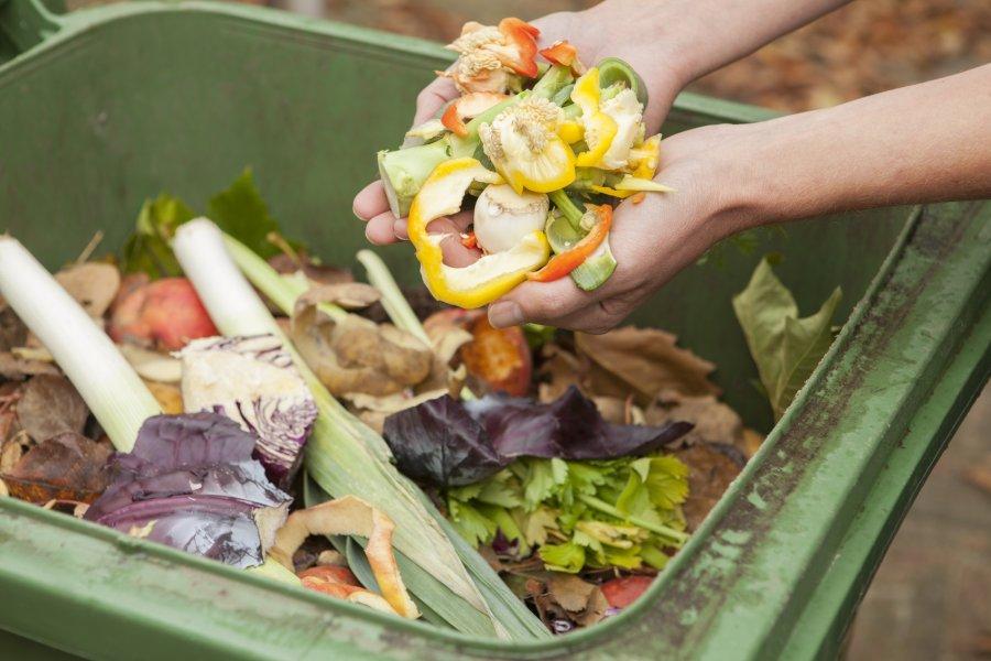 În Legea compostului problemele sunt lipsa normelor tehnice de aplicare (firmă de salubrizare)