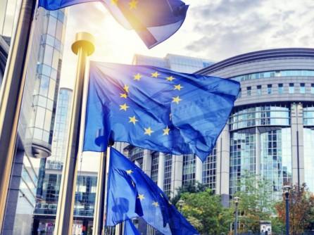 Planul Naţional de Redresare şi Rezilienţă, publicat pe site-ul Ministerului Investiţiilor şi Proiectelor Europene