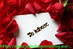 POZE IMAGINI SMS DE DRAGOSTE SI IUBIRE (7)