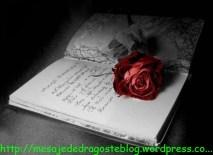 POZE IMAGINI SMS DE DRAGOSTE SI IUBIRE (88)