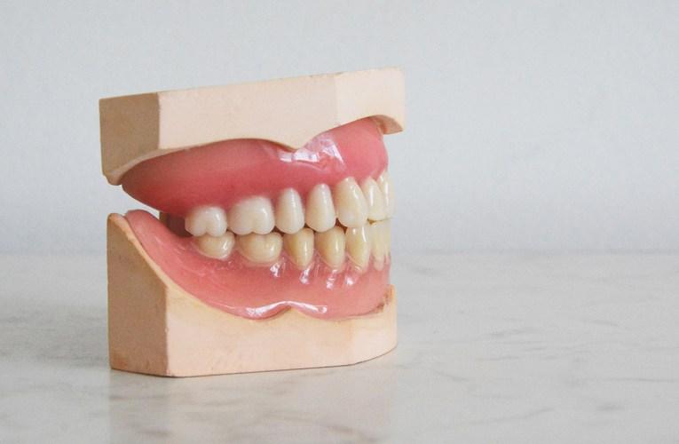 MCC dental hygiene program offering free screenings