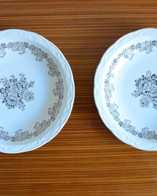 Lot de 2 assiettes creuses Digoin Sarreguemine collection Clovis