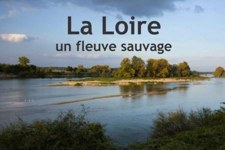 La Loire - photo d'Olivier Simon du site http://www.baladenature.com/