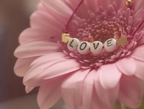 fleurs et sentiments