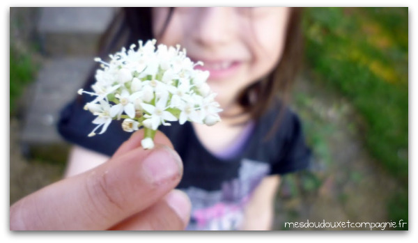 bouquet-fete-des-meres