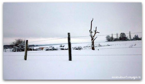 neige-2010-aisne-6