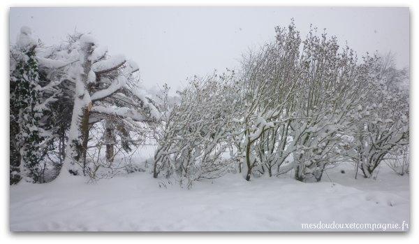 neige-2010
