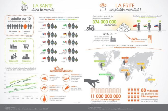 infographie frite