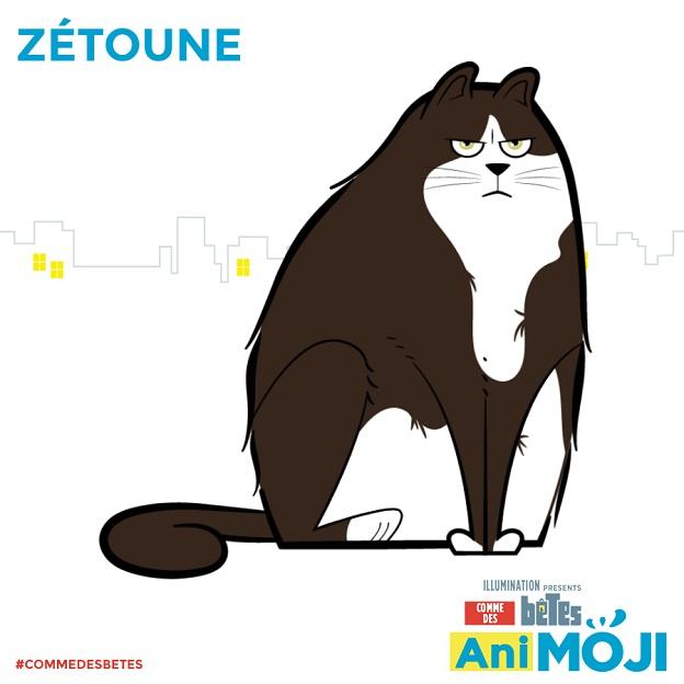 share-Zétoune