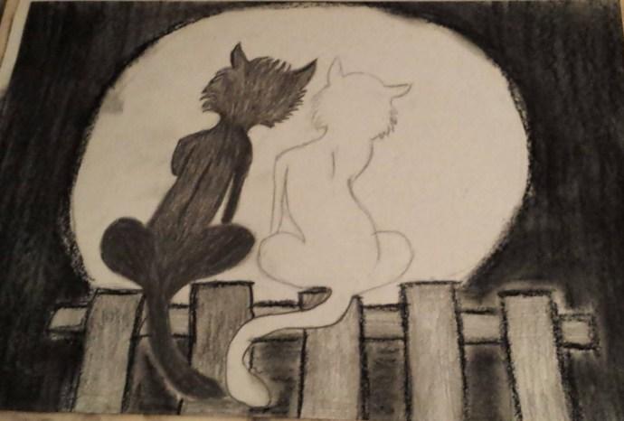 Tamás Anett-A-cica-és-a-macska