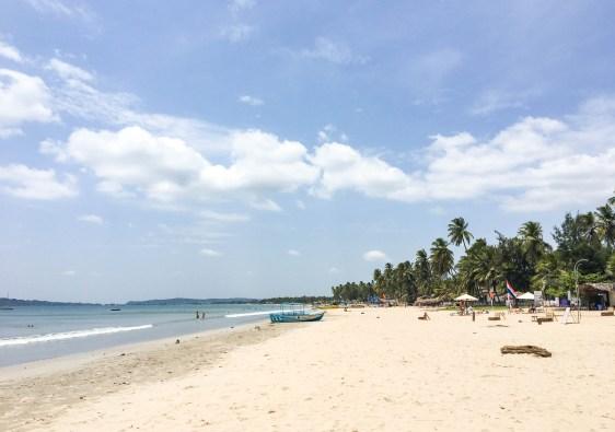 Découvrir le Sri Lanka ensoleillé
