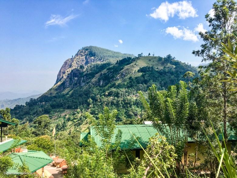 Balade dans les collines de Ella au Sri Lanka
