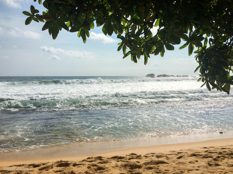 Sur quelles plages aller au Sri Lanka ?