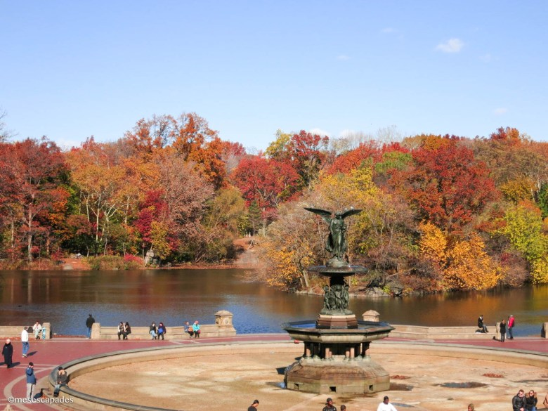 Central Park en automne
