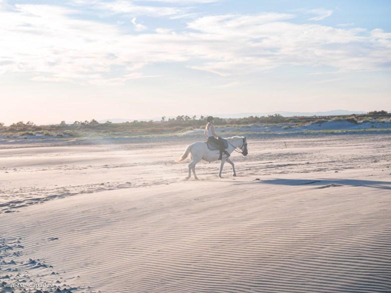 Balade à cheval au soleil