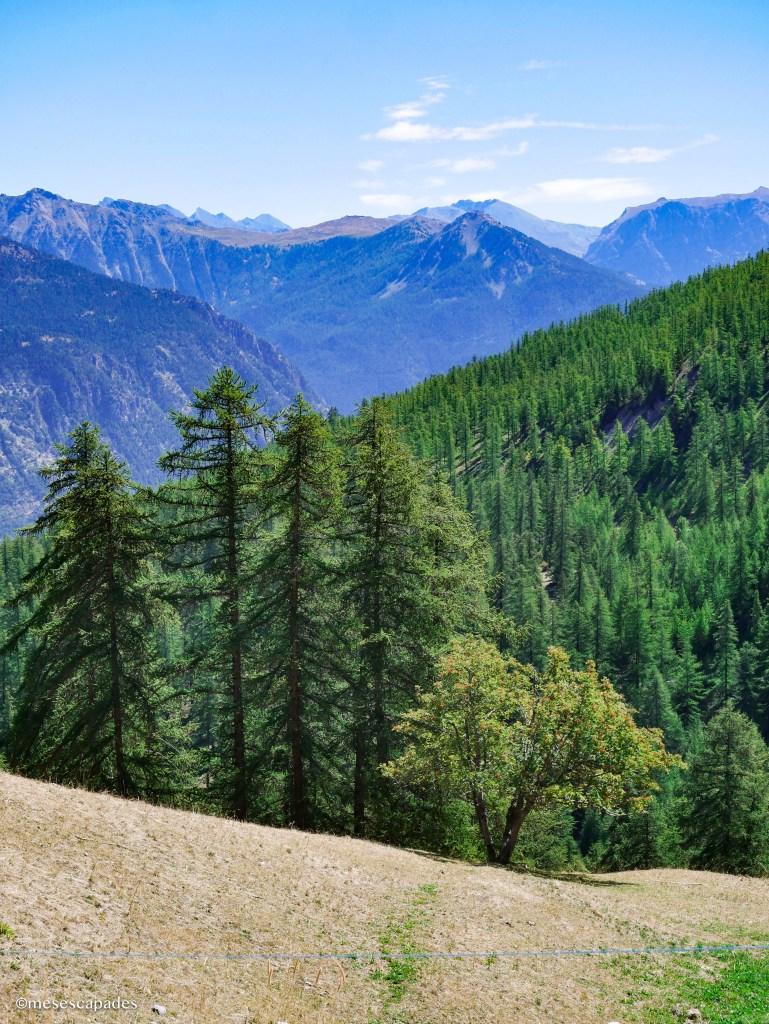 Partir à la montagne l'été