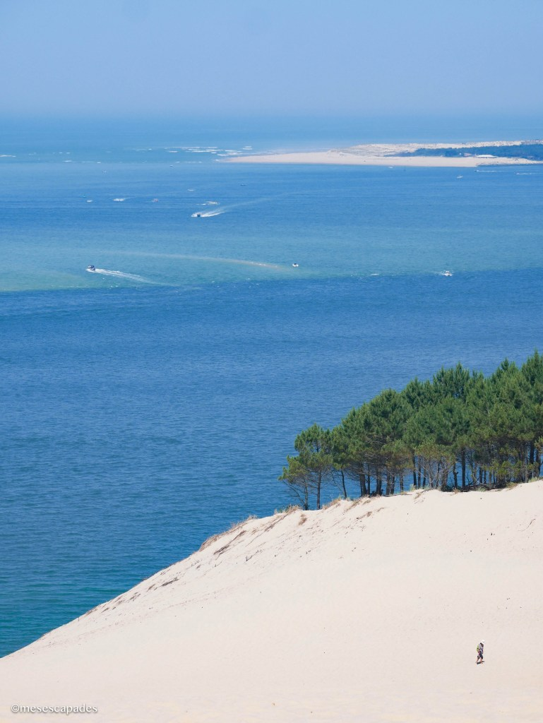 Dune du Pyla et nuances bleutées