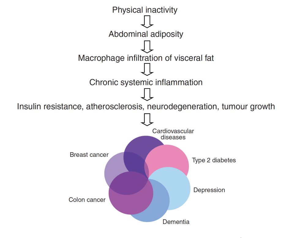 diagram diseasome of physical inactivity