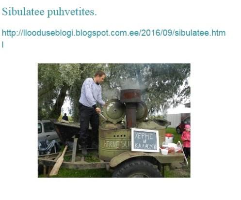 eestimaablogi
