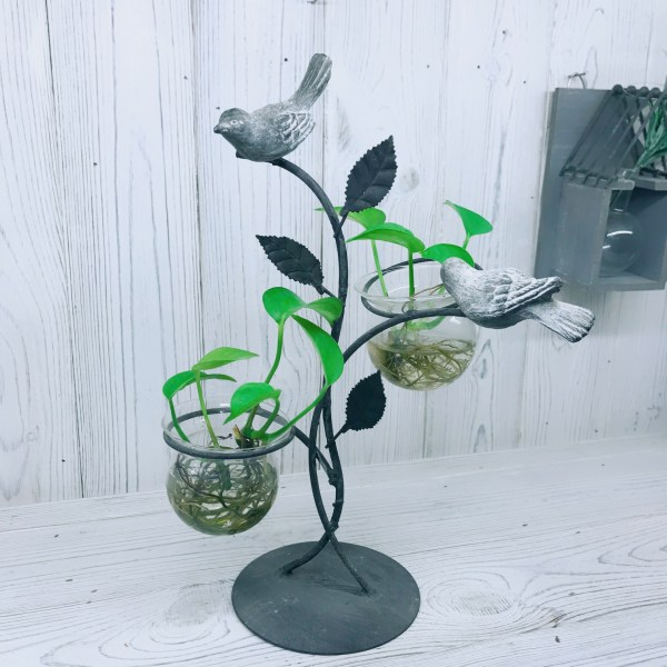 Love Birds Hydroponic Glass Planters