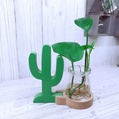 Green Cactus Hydroponic Glass Planter