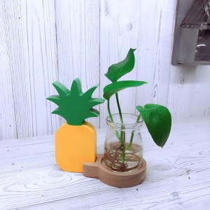 Pineapple Hydroponic Glass Planter