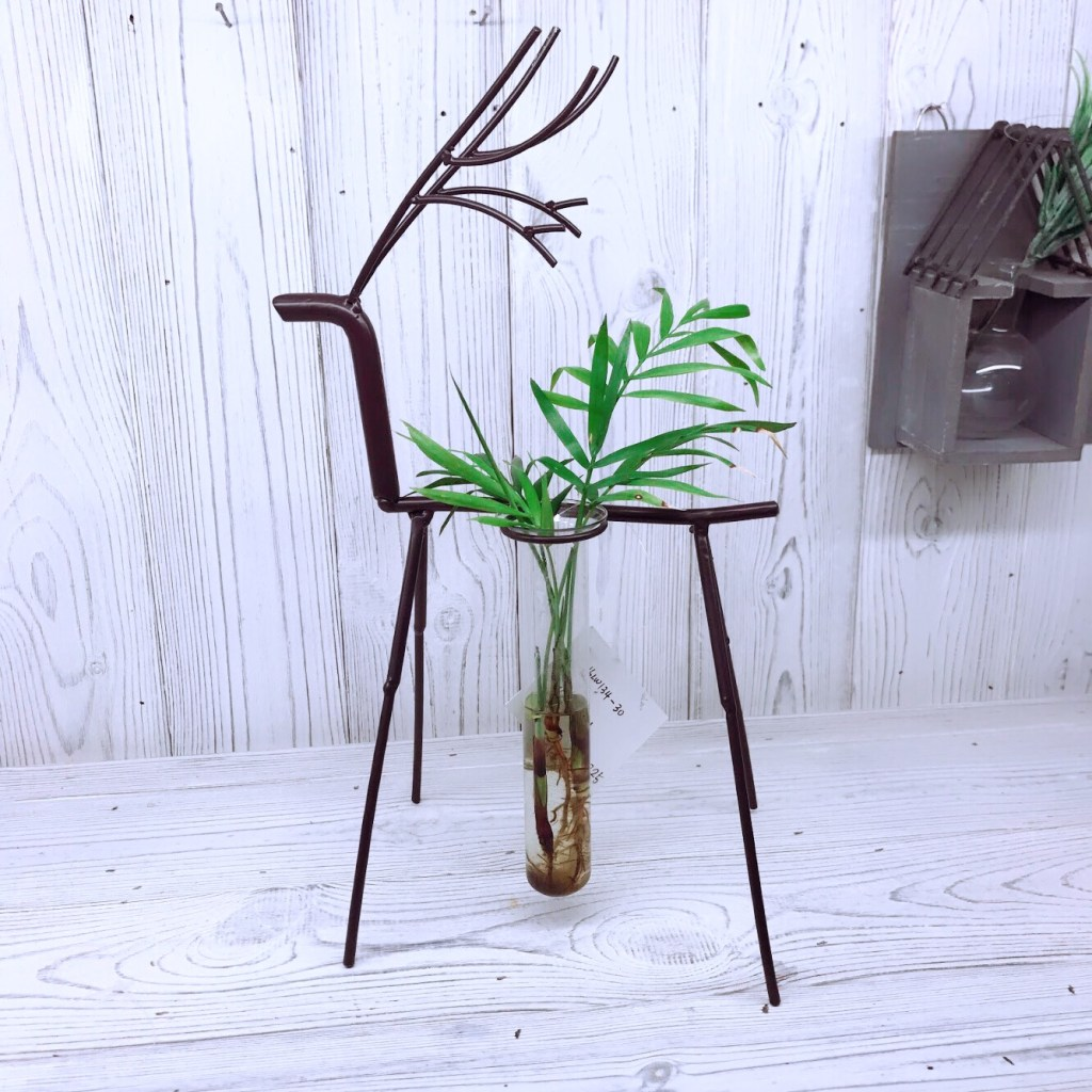 stag hydroponic glass planter