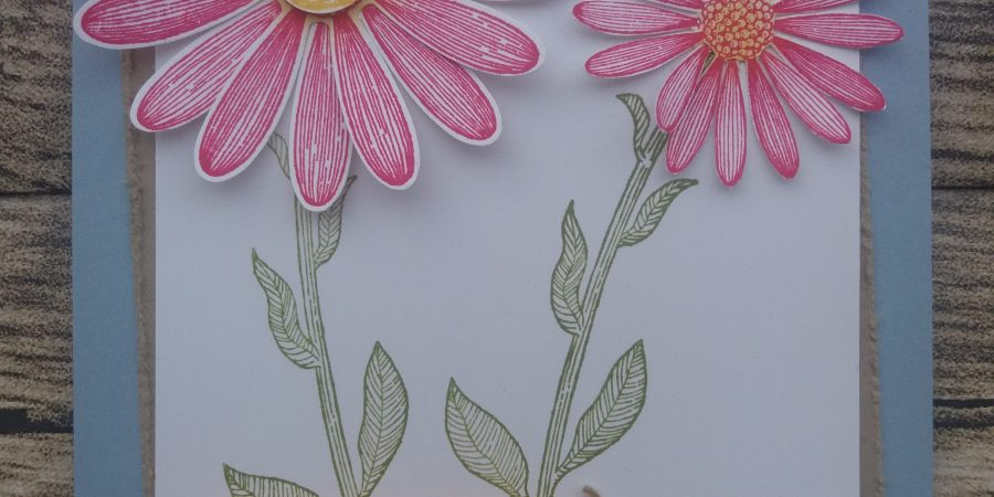 Perforatrice marguerite Stampin up