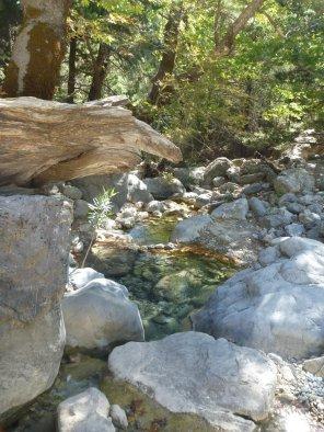 Bassins d'eau limpide
