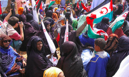 Lost in the Debate: Beyond Dominant Narratives on the Western Sahara Roundtable