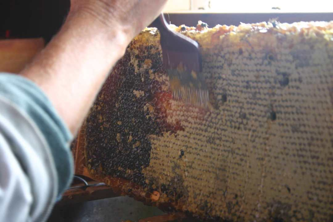 desoperculer miel