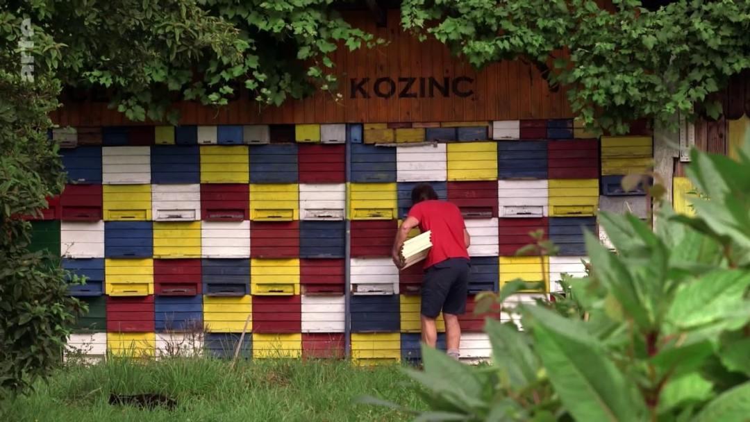 pavillon rucher