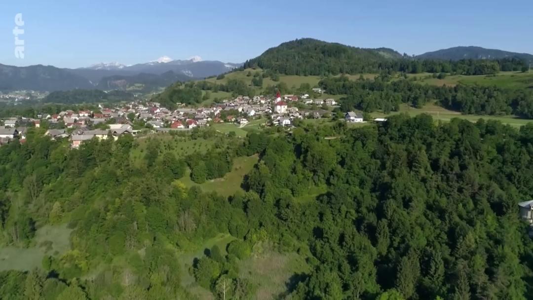 village apiculteur