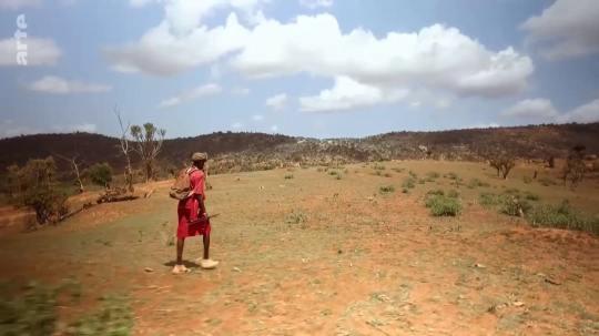 marche afrique chaleur