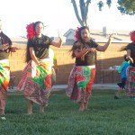 Luau brings fun and funds for VVHS