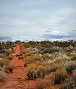 Marlie Warren's blogspot photograph characterizes the dusty trails that cut across our desert.