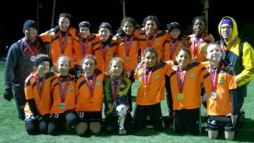MLN-Soccer2jan29-15