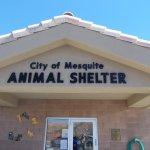 Mesquite's 'Animal Police' perform lifesaving work