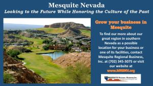 Mesquite Regional Business Ad-page-001