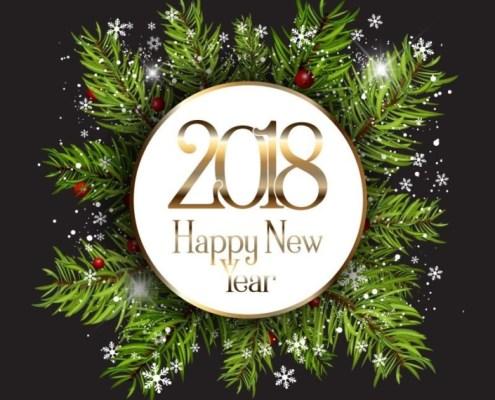 Belle et heureuse année 2018 sur le blog mesrecettesnaturelles
