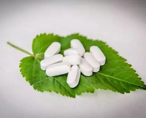 Herboristerie : apprendre à soigner avec les plantes