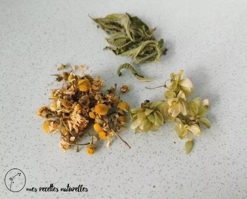 Insomnie : les plantes et les recettes naturelles