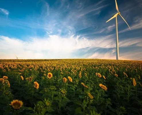 Régime végétalien et impacts sur l'environnement