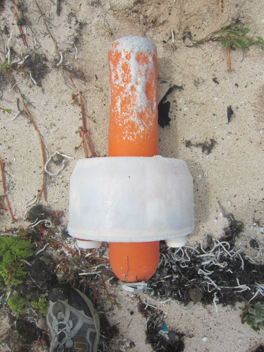 Emergency Beacon on the Beach 2