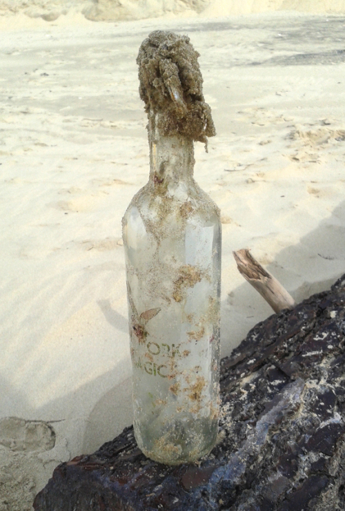 brigitte-and-boorujy-bottle-on-beach-ny-pelagic
