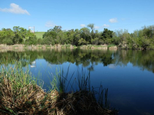 Photo Arastradero Lake from Wandering With Purpose