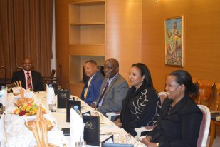 eritrean-and-kenyan-officials-meet