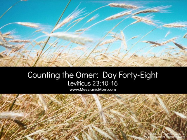 Day Forty Eight Omer Count