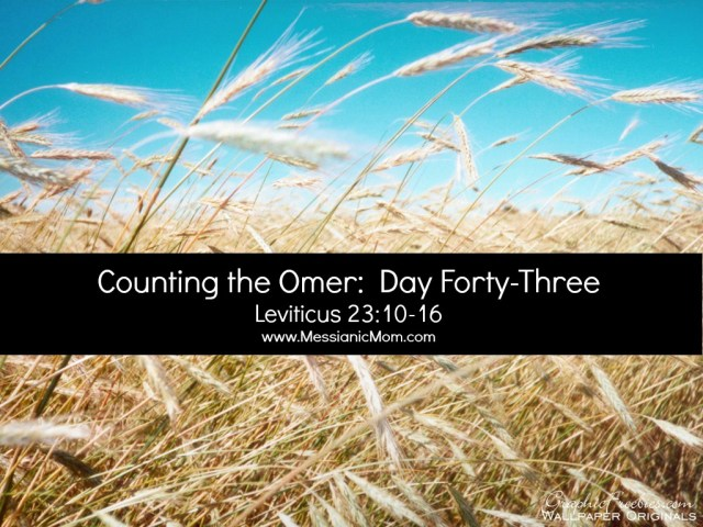 Day Forty Three Omer Count